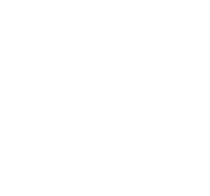 topo-landing1